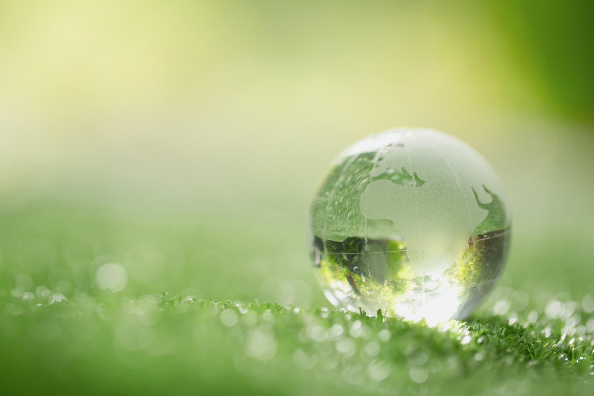 Reynaldi SRL_sostenibilità